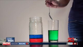 Science Sundays: A Demonstration in Density