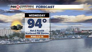 Typical August SWFL Weather This Week 8-8 - Video
