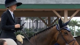 Winter Equestrian Festival begins - Video