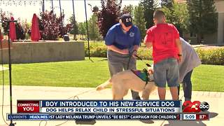 Boy gets autism service dog to help with anxiety