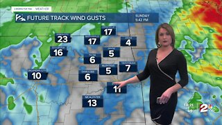 Gusty South Winds and Light Showers for Sunday.