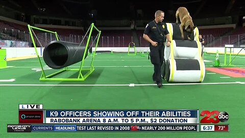 K9 officers from around the state showing off their abilities Saturday to help local veterans
