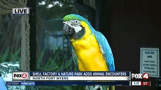 "Shell Factory and Nature Park adds new ""Close Encounters"" exhibit - 7am live report"