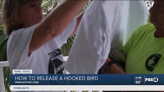 FWC teaches you how to release a hooked bird