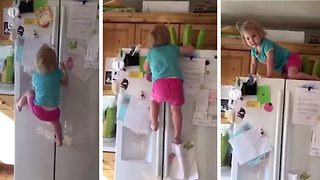Two-Year-Old Shows Impressive Climbing Skills Scaling The Fridge  - Video
