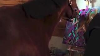 Meet Metro: The Painting Horse - Video