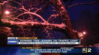 Downed tree leaning on power line on Northern Parkway - Video