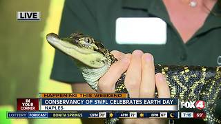 Celebrate Earth Day at the Conservancy of Southwest Florida - 7am live report