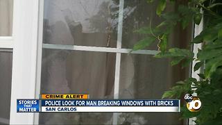 Police looking for man breaking windows with bricks