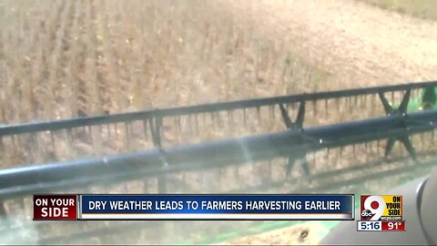 Hot, dry fall weather forcing farmers to harvest early