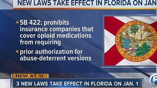 3 new laws take effect in Florida on January 1 - Video