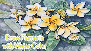 How to Draw Plumeria with Water Color