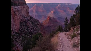 PINK SNAKES! Weird things about the Grand Canyon - ABC15 Digital