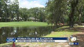 Woman killed by alligator - Video