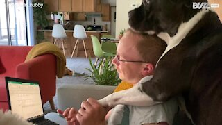 Rescue Pitbull shows owner how much he loves him
