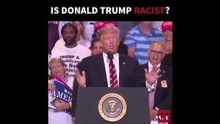 Is Donald Trump Racist - REMIX