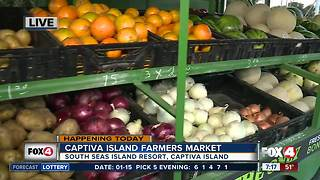 Captiva Island Farmers Market opens Tuesday - 7am live report - Video