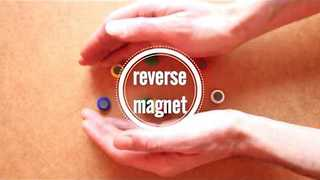 Mesmerizing Clip of Magnets in Reverse - Video