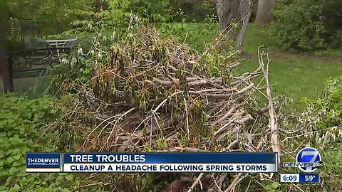 Homeowners struggle to get rid of tree limbs after spring storms
