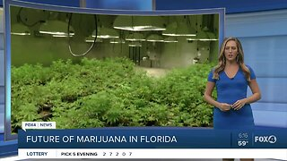 No legal recreational marijuana vote in Florida in 2020
