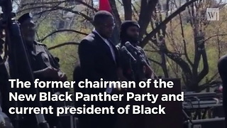 Former Black Panther Demands Trump Give African Americans The State Of Florida - Video