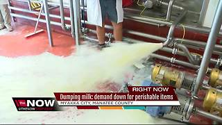 Dairy farmers forced to dump milk after Hurricane Irma