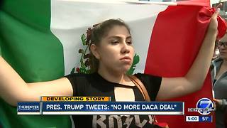 Trump says 'NO MORE' on deal for 'Dreamer' immigrants