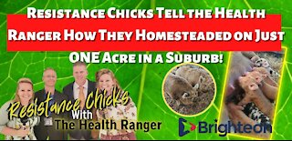 HEALTH RANGER INTERVIEWS RESISTANCE CHICKS WHO HOMESTEADED ON ONE ACRE AN A SUBURB!