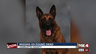 Deputy's K9 Found Dead in North Port - Video
