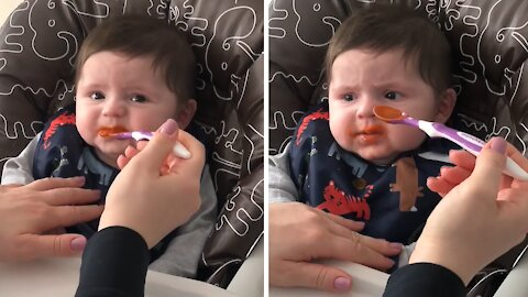 Displeased baby trying purée carrots for the first time