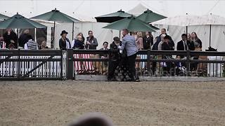 Activists breach security at Windsor horse show days before royal wedding - Video