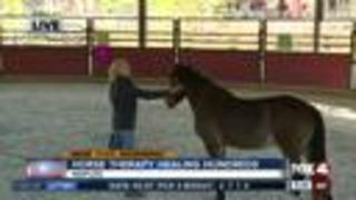Horse therapy healing hundreds in Naples - 8:30am live report