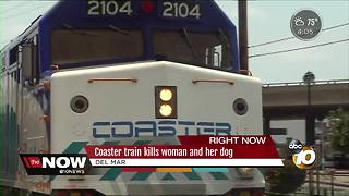Coaster train kills woman and her dog - Video