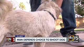 Valley man shoots dog during attack in Gilbert - Video