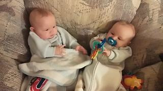 The Cutest Sibling Rivalry Of All Times - Video