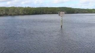 Scientists search for source of pollution on the Treasure Coast - Video