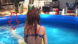 Girl Swims with Huge Burmese Python - Video