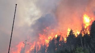Brian Head Fire Burns Through Parts of National Forest in Utah - Video