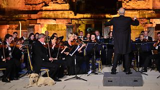 Dog walks out on stage and settles in during performance Vienna Chamber Orchestra in Ephesus --- - Video