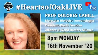 Livestream with Prof Dolores Cahill 16.11.20