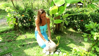 Sprouted Coconut, Koh Phangan Thailand - Video