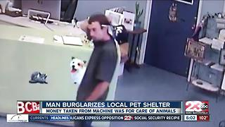 Man burglarizes Kern County SPCA - Video