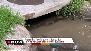 Preventing flooding across Tampa Bay - Video