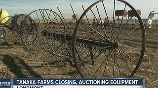Tanaka Farm Sale - Video