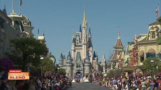 Disney Vacation Club - Video