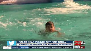 Bakersfield Polar Bear Plunge - Video