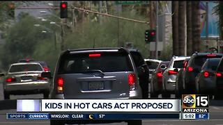 Kids in hot cars act proposed - Video