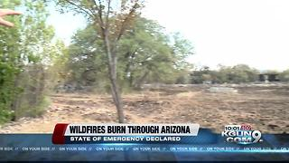 Wildfires burn through Arizona