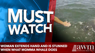 Woman Extends Hand And Is Stunned When what momma whale does - Video
