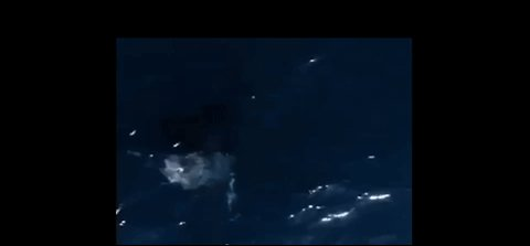 Drone Footage Captures Stunning Humpback Whale Breach in Hawaii's North Shore